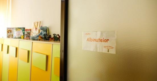Grupa Albinutelor